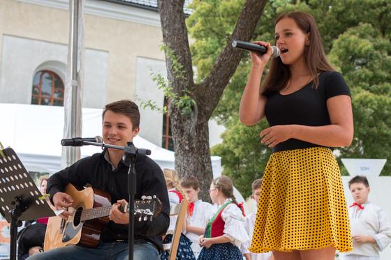Koncert a dražba pro Kubíčka